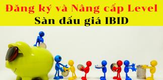 Đăng ký và nâng cấp sàn đấu giá IBID
