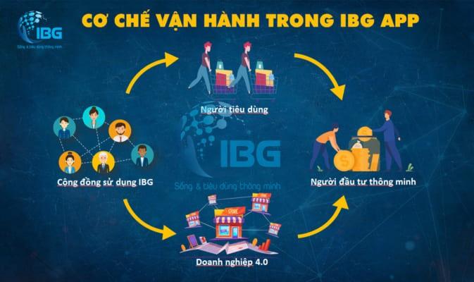IBG tại Việt Nam có đủ giấy phép kinh doanh và người đại diện, ban lãnh đạo