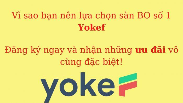 Sàn giao dịch nhị phân Yokef