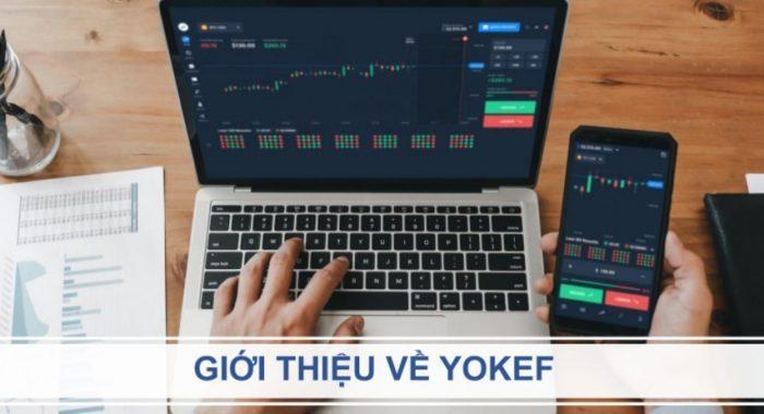 Sàn giao dịch Yokef là gì