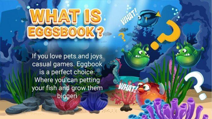 Eggsbook là gì ?