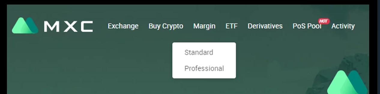 Kích chọn vào Margin rồi chọn loại hình Standard hoặc Professional