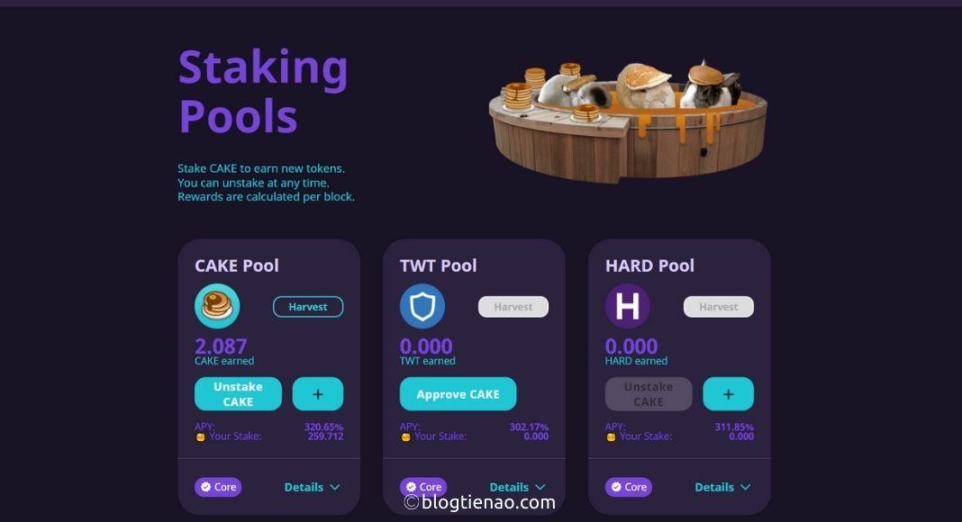 Truy cập vào Staking Pools và chọn Pool để CAKE Stake