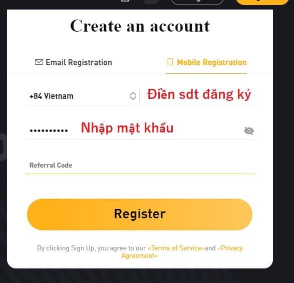 Bạn điền khá đầy đủ thông tin rồi kích chọn vào Register
