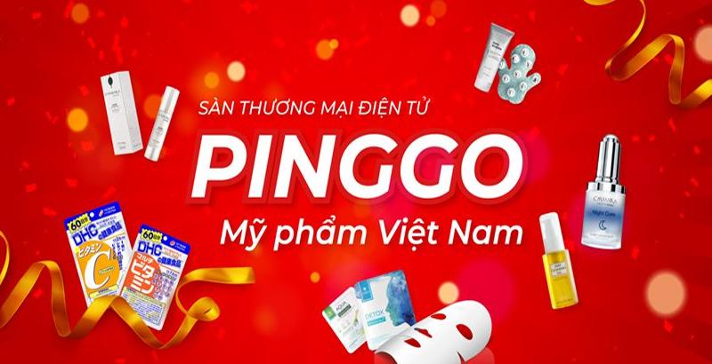 PingGo là gì? Đôi nét về dự án PingGo Network