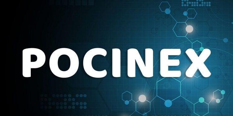 Pocinex là gì? 4 cách kiếm tiền hiệu quả nhất cùng Pocinex