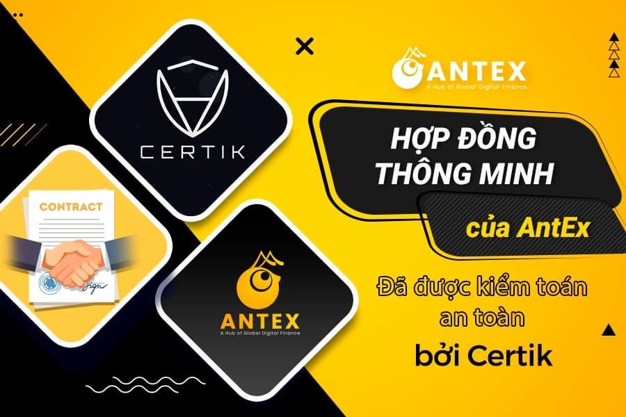 kiểm toán dự án antex